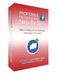 facebook-marketing-newbies-3D-box-FINAL (1)
